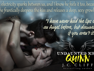 Meet Quinn…one of the Undaunted Men A new series by J.C. Cliff