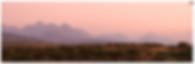 Screenshot 2020-03-31 at 12.19.38.png