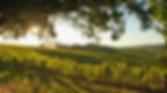 Skjermbilde 2020-03-09 kl. 13.38.43.png