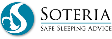 Soteria logo PMS 314.png