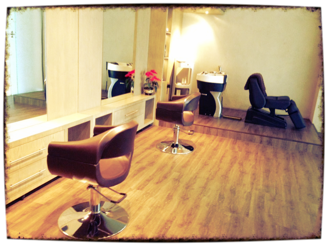 Inside Salon