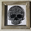 Thumbnail: Skull shadow Box Frame 8x8""