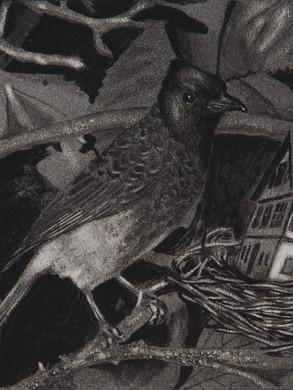 Nostomania no 6 - 50 x 50 -  Acrylic on paper - 2014