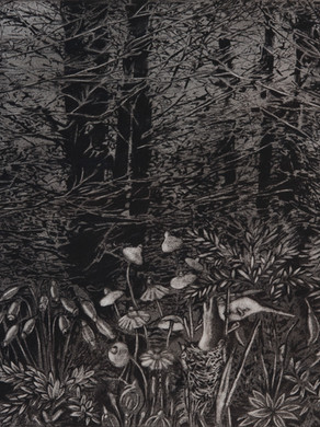 Nostomania no 7 - 50 x 50 -  Acrylic on paper - 2014