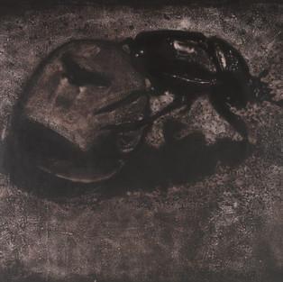 Beraberinde Bir Sinekle Gel / Come Together Wıth A Fly -182 x 220 Acrylic on paper - 2011