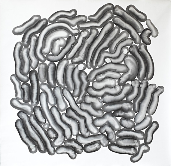 Bakteriler // Bacteries - 70x70 - acrylic on canvas - 2017