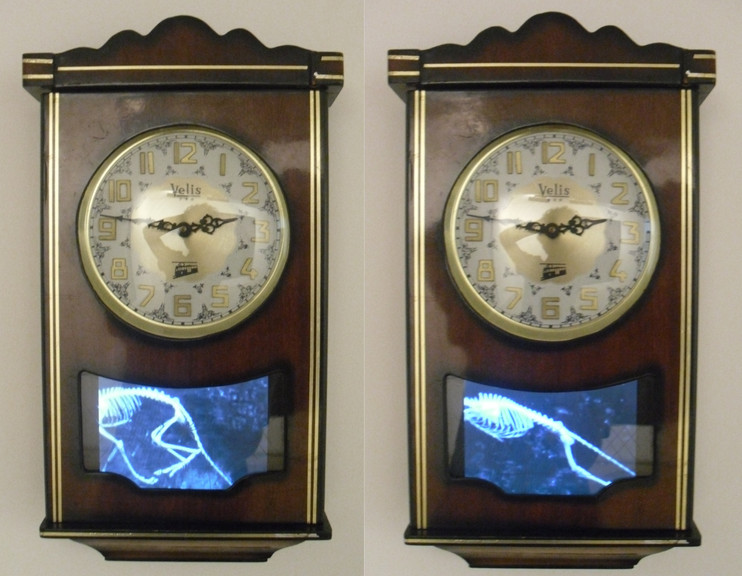 Sarkaç'ın Doğası no 1 / Nature of the Pendulum no 1- 60 x 30 x10 - clock, video, in loop - 2011