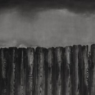 Total Kurumlar, Çit Duvar / Total Institutions, Fence Walls - 170 x 85 - Acrylic on canvas - 2014
