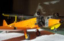 T6G-AMI-017_edited.jpg