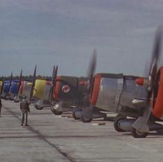 still P-47.jpg