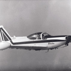 SF260 - Luckyplane-IT0007 CMYK.jpg
