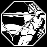 1 Stormo Caccia - Logo.png