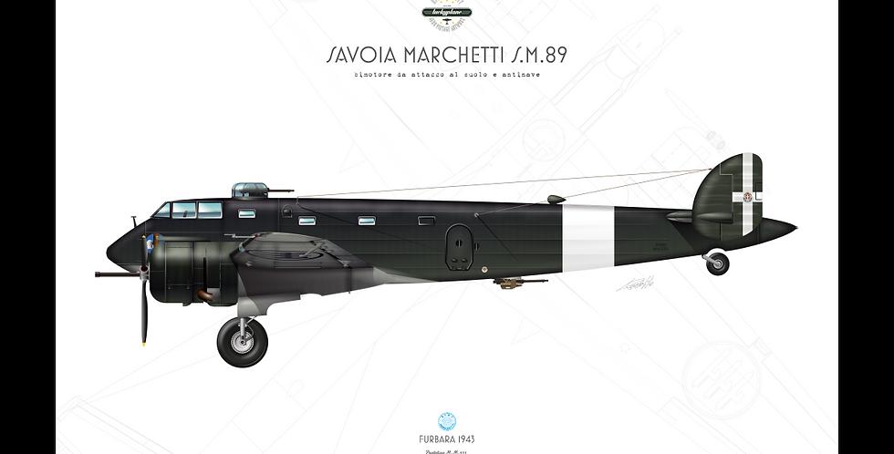 SIAI Marchetti S.M.89 prototipo