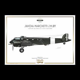 SIAI Marchetti S.M.89