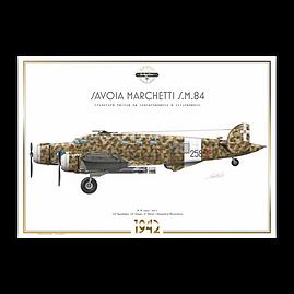 SIAI Marchetti S.M.84 - 36° Stormo