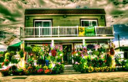 Centre de jardinage 440-42-1.jpg