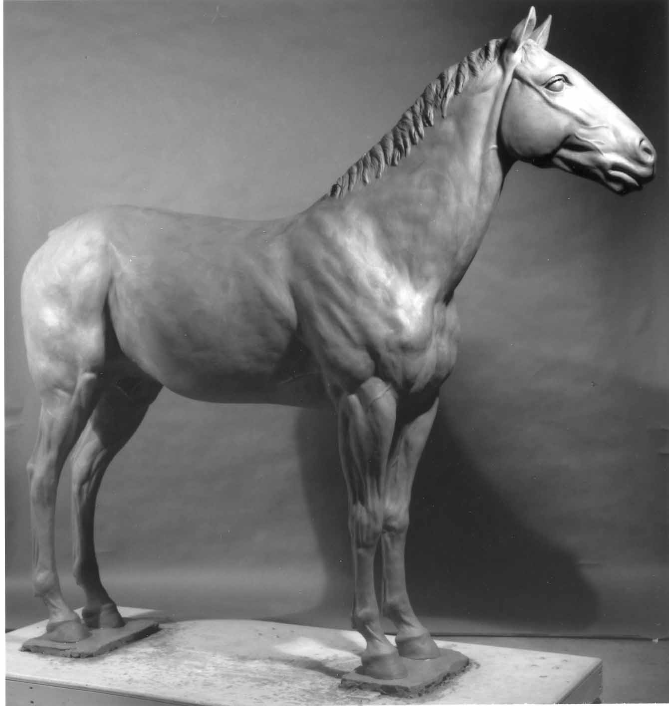 Horse in Clay — Met Museum