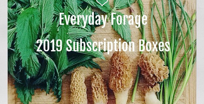 Everyday Forage Subscription Box