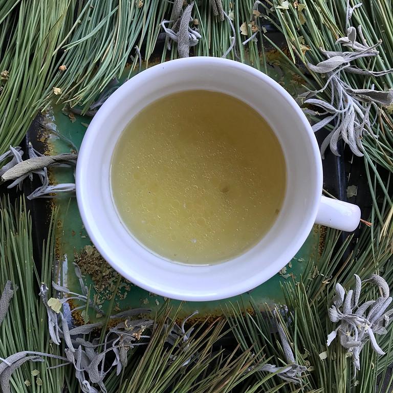 Nourishing Winter: Medicinal Foraged Soup Workshop