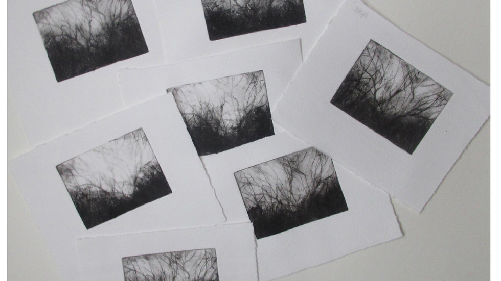 'Winter Trees' Dry etchpoint limited edition print