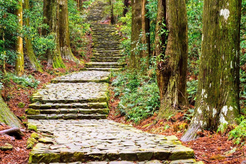 Kumano-kodo-Nakahechi-Route-1.jpg