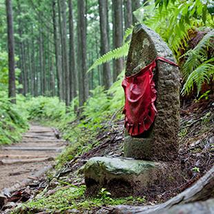 Kumano Kodo trail-2.jpg
