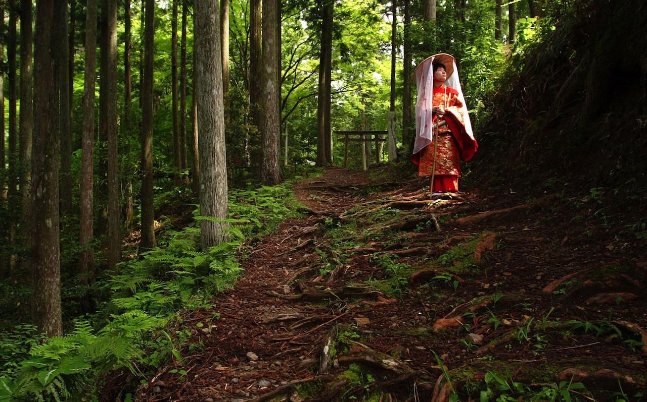 japan-forest-geisha.jpg