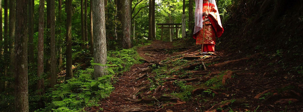 japan-forest-geisha.jpg