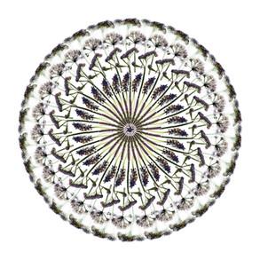 White Flower (I), 2019