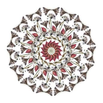 White Flower (III)
