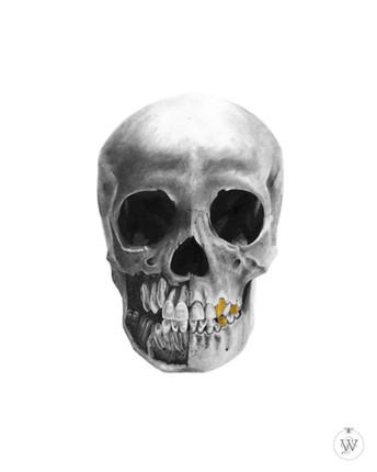 Skull No.7, 2016