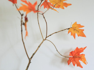How To Make A Thankful Tree (And Make A Donation That Matters)