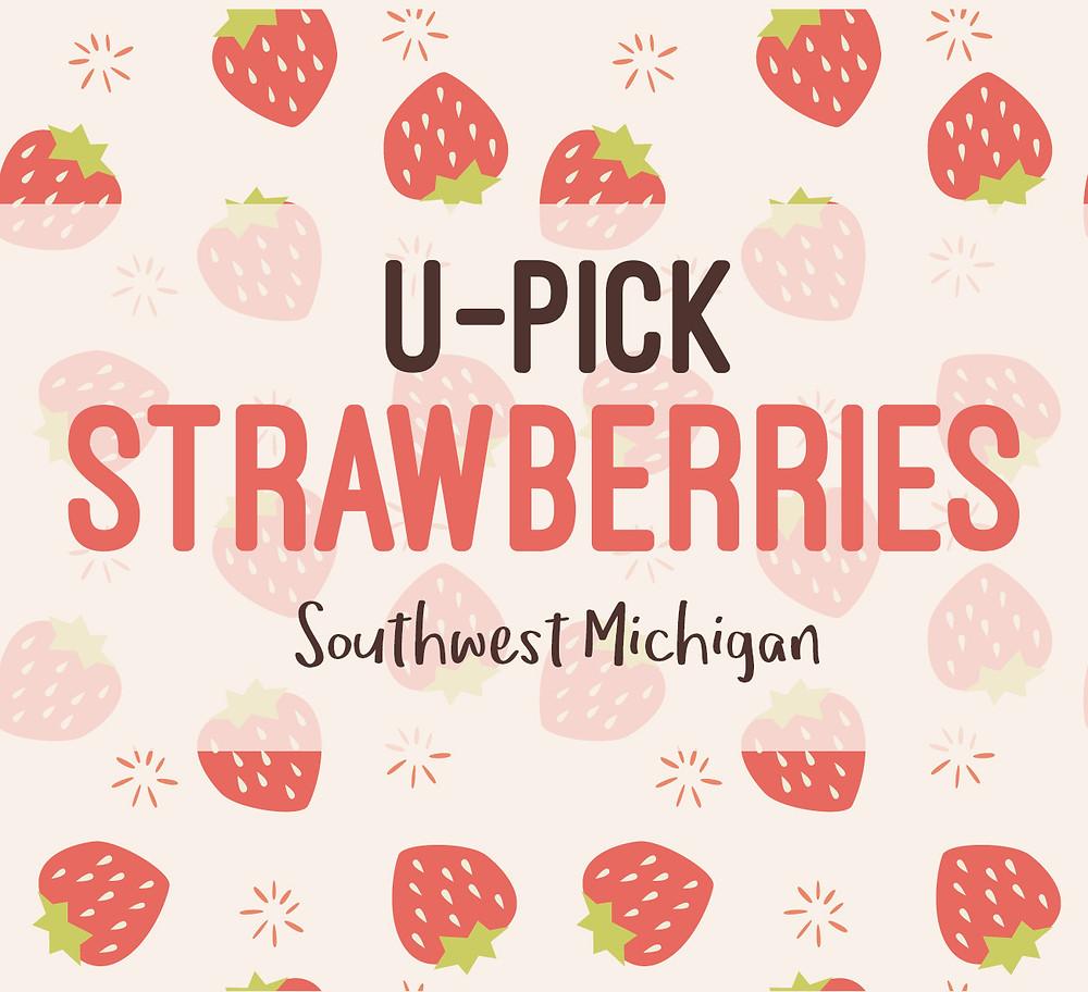 U-Pick Strawberries in Southwest Michigan