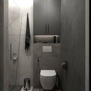 1 этаж.  Гостевой санузел и постирочная. Вид 3
