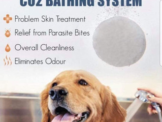 Does your dog have itchy skin? Tear stains? Hair loss?