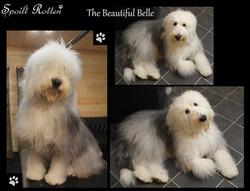 Belle OES.jpg