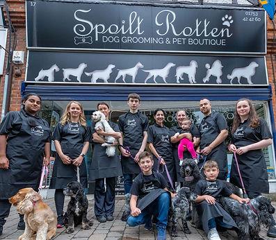 Award winning dog grooming team