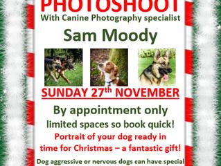 Doggy Photo Shoot Day: Sun 27th Nov