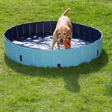 Cooling aids to help your doggies...