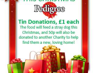 Feed a stray this Christmas