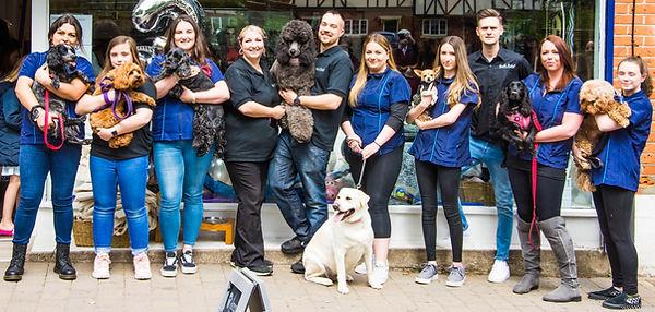 Dog groomers team