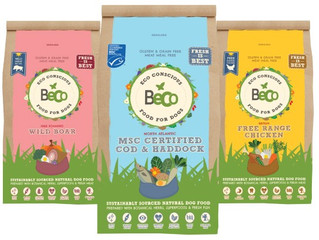 GRAIN FREE FOOD- now in stock