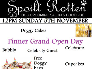Don't let your doggy miss our Grand Open Day! FREE goody bags and more!!