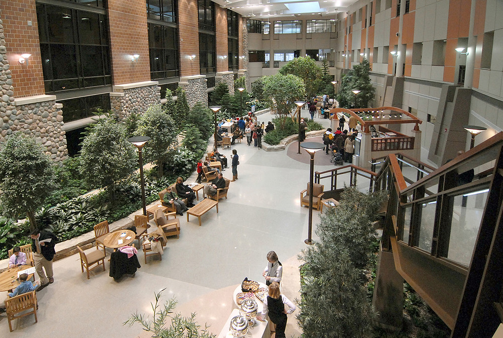 Image: Henry Ford Hospital West Bloomfield Atrium Space.