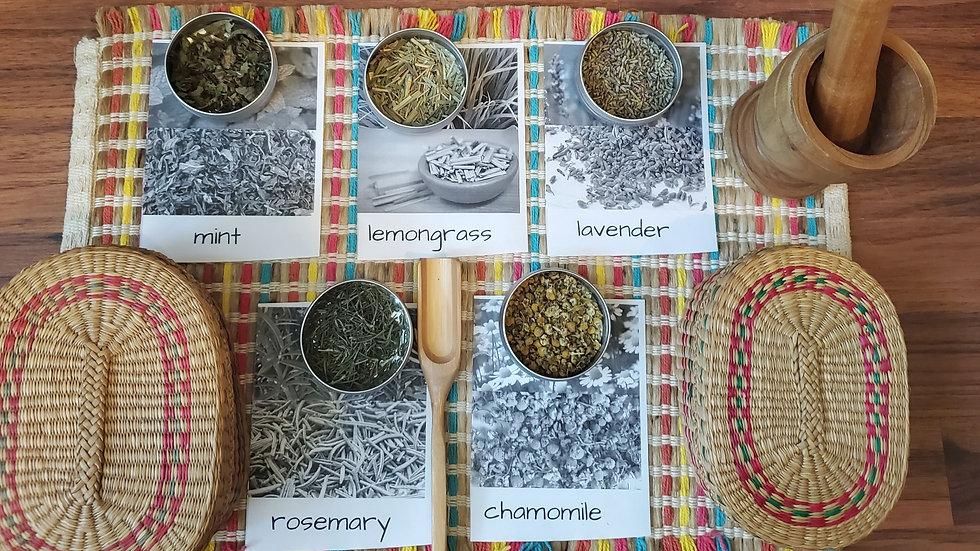 Children's Herbal Set