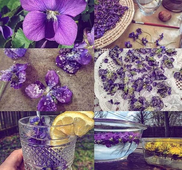 budding herbalist.jpg