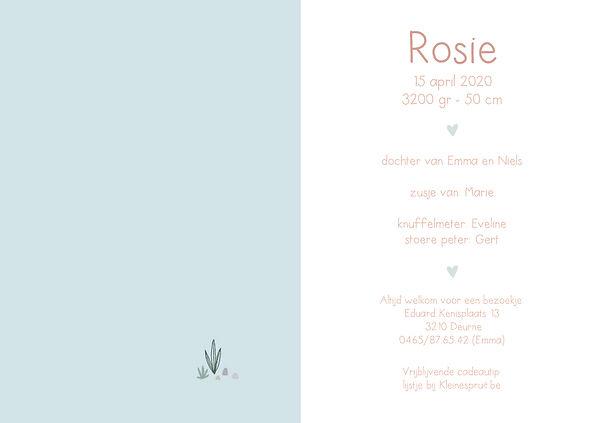 Rosie-binnenkant-WEB.jpg