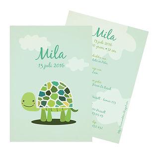 Je vindt hier een groen-blauw geboortekaartje met een lieve schildpad tussen de wolken. De geboortekaartjes zijn ontworpen door illustrator Karen Vandelaer.