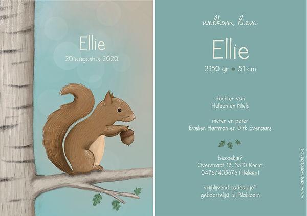 #ellie #geboortekaartje #eekhoorn #zwanger #zomer #lente #birdcard #geboortekaartjeopmaat #birthannouncement #illustrator #Diest