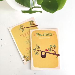 Paulien geboortekaartje